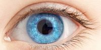 Eyelash Ablation